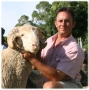 First Konsortium-Merino advisor for clients picture