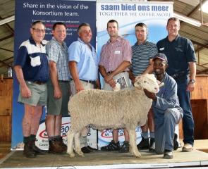 Verbeter SA rekord op 32ste veiling picture